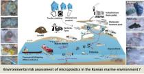 Environmental Risk Assessment of Microplastics in the Korean Marine Environment?
